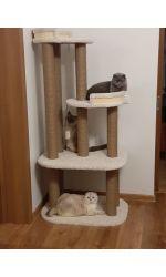 "Комплекс для кошек ""Фантазия"""
