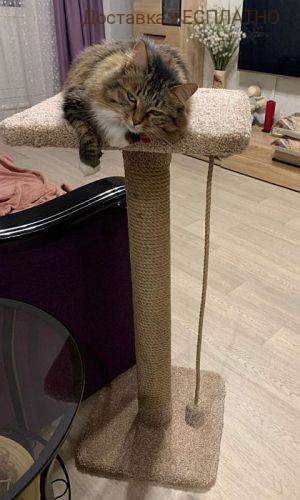 """Когтеточка столбик """"Кити"""""""