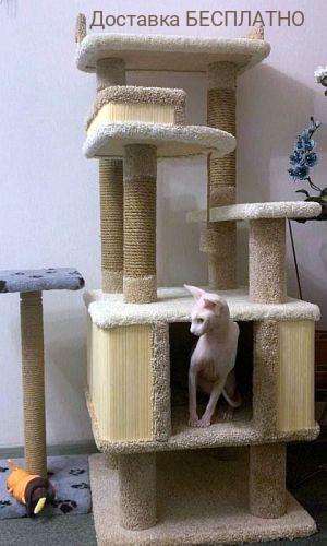 """Комплекс для кошек """"Фортуна"""""""